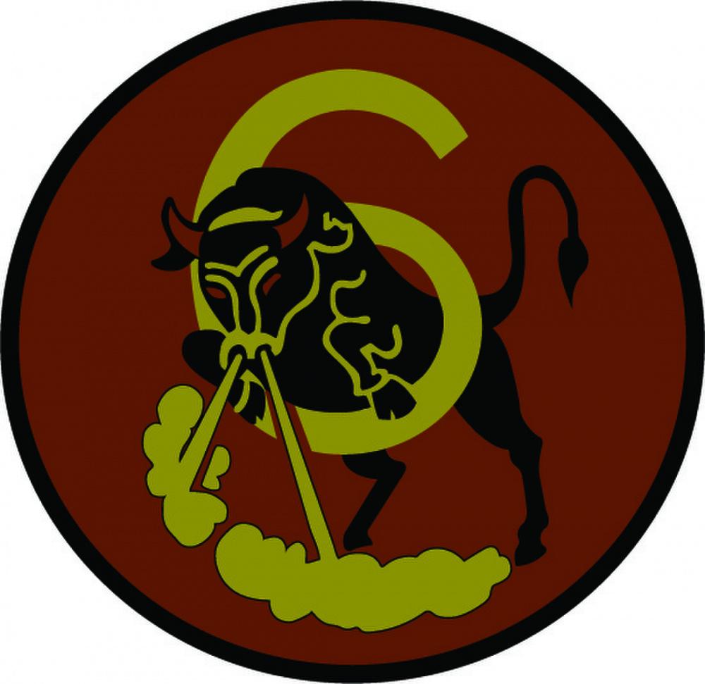 Cadet Squadron Patch