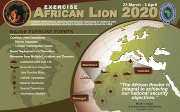 African Lion 20 Infographic