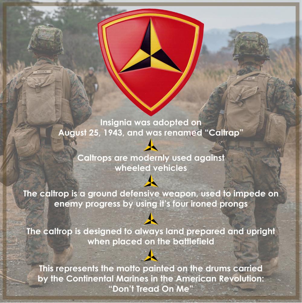 3d Marine Division Anniversary