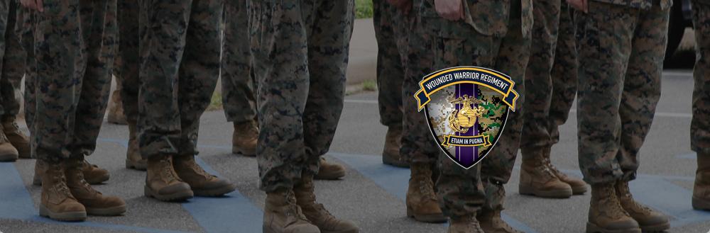 Wounded Warrior Regiment Hero Banner Formation