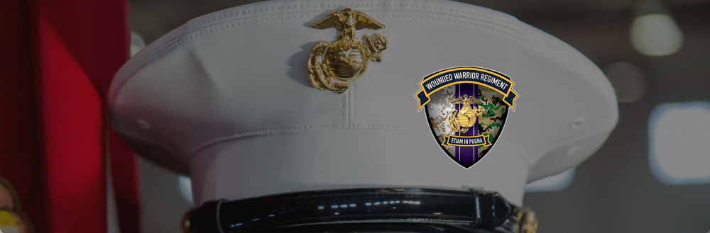 Wounded Warrior Regiment Hero Banner Blues Cover